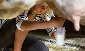 """""""Gece sağılan ineğin sütü daha iyi uyutur"""""""