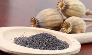 Sağlıklı yaşamın sırrı: Kutsanmış tohumlar!