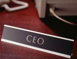 Torbadan kamu 'CEO'ları çıktı
