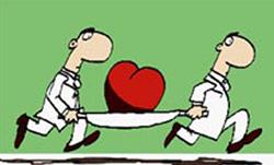Organ naklinde 'can alıcı' gerçekler!