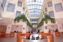 Sema Hastanesi yaşlı Avrupalıya huzurevi kuruyor