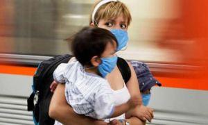 Virüslerin parmak izi alındı domuz gribi yüzde 2'ye indi