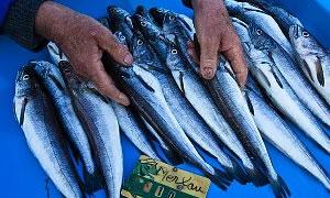 Balık yağının faydası çok