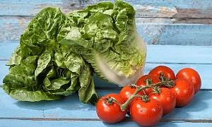 Salatalar ve soslar