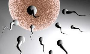 Sperm vermek için iki aydır temiz oda bekliyor!