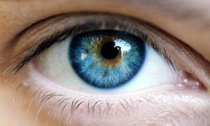 Multipl Skleroz (MS) hastalarına göz testi takibi