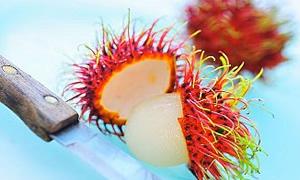 Doğal obezite ilacı: Rambutan