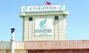Sağlık Bakanlığı'ndan Etlik personeliyle ilgili basın açıklaması