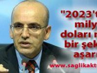 """Şimşek: """"2023'te 20 milyar doları rahat bir şekilde aşarız"""""""