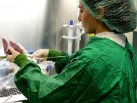 Ailesinde böbrek hastası olanlara 'genetik danışmanlık' verilecek