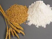 Buğdayın vücudumuza zararları