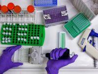 'T-hücre tedavisi' kanseri alt edecek mi?