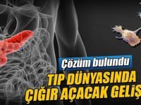 Pankreas kanserine yan etkisiz ilaç