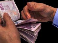 TÜSEB her sene 100 bin lira ödül verecek