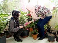 Nevşehir'de okulda 'doğal yaşam alanı' oluşturuldu