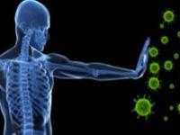 LIGHT enzimi kanserde çığır açacak: T-hücrelerini etkinleştirerek tümör oluşumunu geriletiyor
