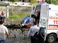 Muş'ta öğrenci servisi ile kamyonet çarpıştı: 17 yaralı
