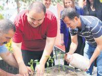 Bahçe terapisiyle sağlık bulacaklar