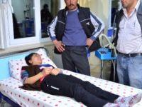 Eskişehir'de yedikleri mantardan 6 kişi zehirlendi