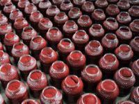 Prof. Dr. Aziz Ekşi: 'Plastik kaplardaki salça insan sağlığına zararlı'