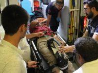 Yılanın ısırdığı çocuk hastanelik oldu