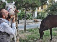 Kadın doğum doktoru, hayatını atlarına adadı