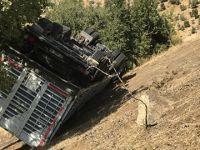 Uçuruma yuvarlanan üç kişiyi ağaç kurtardı