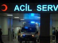 Kocaeli'de 40 üniversite öğrencisi hastanelik oldu