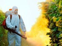 """'Ufak Tefek Cinayetler'in """"pestisit""""i hangi besinlerde bulunur?"""