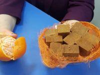 Türk doktor mandalina kabuğundan tablet üretti
