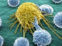 """""""Kanserin görülme riski her geçen gün artıyor"""""""