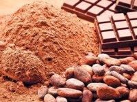 Kansere karşı saf kakao
