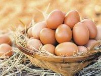 Sağlık Bakanlığı'ndan yumurta uyarısı