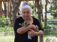 İzmir'in kedisever hemşiresi