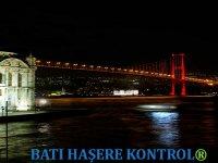 İstanbul'un Büyük Dertlerinden Birisi: Haşere Mücadelesi