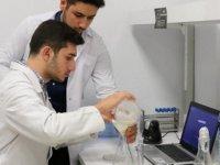 Ispanak ve zencefil hastalık tespitinde kullanılacak