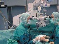 Mikro Cerrahinin Kullanıldığı Alanlar