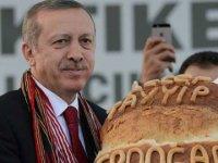 Erdoğan: Ekmek, yağ, bal yemeli mi, yememeli mi araştırılsın