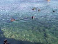 Datça'da denizden 1,5 ton çöp çıkartıldı