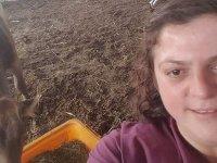 İneğe doğum yaptıran veteriner hekim elektrik akımına kapılarak hayatını kaybetti