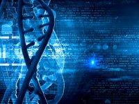 Türkiye'nin ilk hemofili gen tedavisi Ege Üniversitesinde