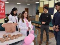 Türkiye'de 500 erkeğe meme kanseri tanısı konuldu