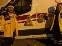 Sağlıkçılar için ambulans kapısına meyve poşeti astılar