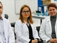 Türk bilim insanları 'yapay tendon' için çalışıyor