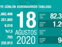 Koronavirüs'te can kaybımız 6.016'ya yükseldi, vaka sayısı 251.805'e ulaştı!