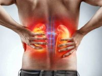 Böbrek Hastalarında Hipodiyaliz Merkezlerinin Önemi