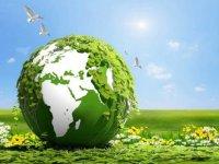 LG, Dünya Çevre Günü'nde daha az plastiğe dikkati çekiyor