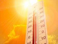 """Edirne Tabip Odası Başkanı Prof. Dr. Altun'dan kalp-damar hastalarına """"sıcak hava"""" uyarısı:"""