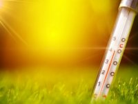 Uzmanından sıcak havalardan korunma önerileri