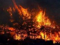 Antalya'daki orman yangınlarından etkilenen 10 kişinin tedavisi sürüyor